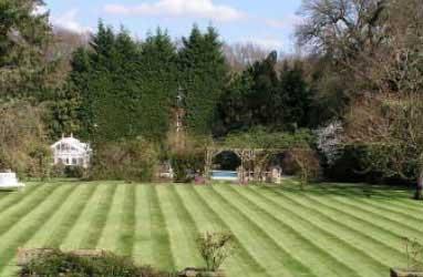 Gardening Services Surrey